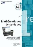 Mathématiques dynamiques, classe de Première